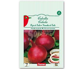 Auchan Semillas para sembrar cebollas de variedad Roja de la Zalla 2 Gramos