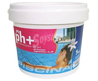 Pqs Incrementador de pH granulado, PQS 5 kg