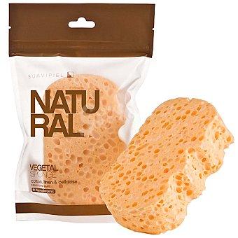 Suavipiel Esponja de baño Natural vegetal bolsa 1