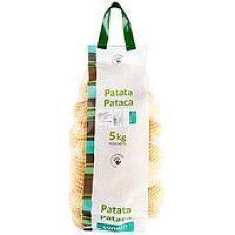 Patata común Malla 5 kg