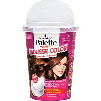 Schwarzkopf Palette tinte nº 6 Rubio Oscuro coloración Mousse Color permanente con brillo intenso envase 1 unidad con perfume afrutado Envase 1 unidad