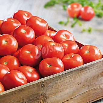 Tomate bola Bandeja de 500 g