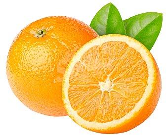 FRUTA Naranjas Zumo Malla 4 Kilos