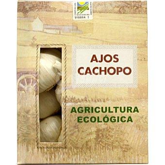 CACHOPO Ajos Cachopo Ecológicos Caja 500 g
