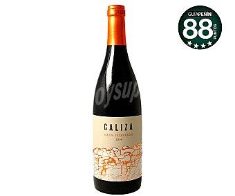 GRAN SELECCIÓN Vino tinto con denominación de origen La Mancha caliza Botella de 75 cl
