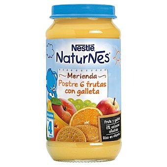 Nestlé Naturnes merienda 6 frutas con galleta Tarro 250 gr