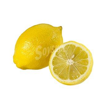 Limón unidad (240 gr aprox.)