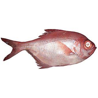 Palometa Roja/Macho - Unidad - Peso Aproximado 1 kg