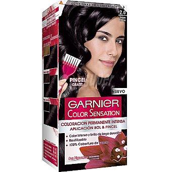 Color Sensation Garnier Tinte negro ébano nº 2.0 coloración permanente intensa pincel gratis Caja 1 unidad