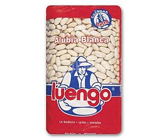 Luengo Alubia blanca larga extra Paquete de 1 kg