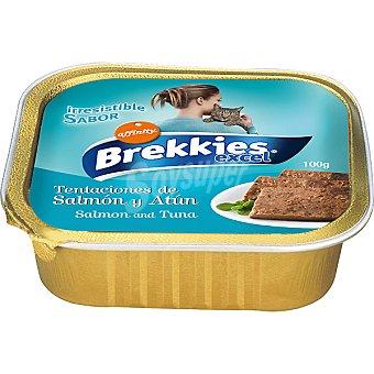 Brekkies Affinity Alimento de salmón-atún para gato Tarrina 100 g
