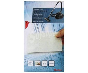 Auchan Filtro protección motor AUC 14130M, universal, 310 x 125 mm