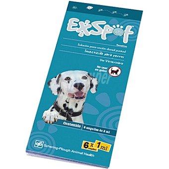 EXSPOT Solución insecticida para perros de unción dorsal envase 6 ampollas Dosis de 1 ml