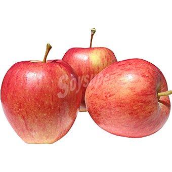 Manzanas rojas starking selección al peso 1 kg