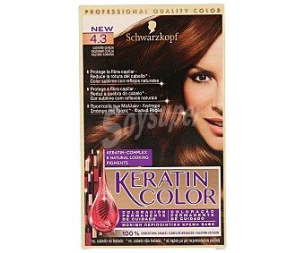 Keratin Color Schwarzkopf Coloración Permanente nº 4.3 Castaño Cereza 1 unidad