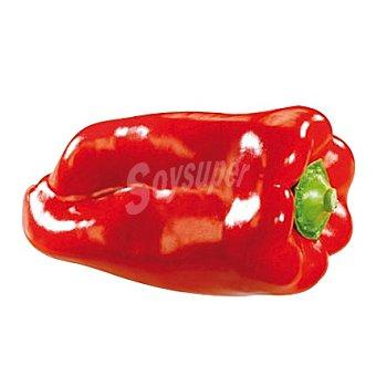 Pimiento Rojo de Mallorca a granel Bolsa de 1000 g peso aprox.