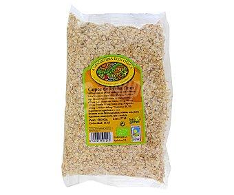 Biogoret Copos avena finos cereales Ecológicos 500 Gramos