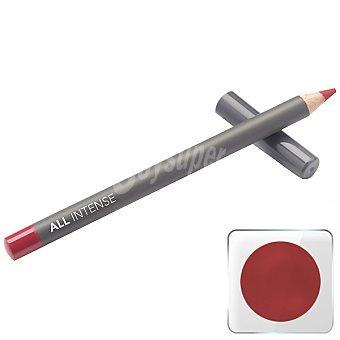 All Intense Lápiz de labios Bakewell Tart 003 Unidad