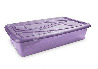 Carrefour Baúl bajocama antipolillas violeta 1 ud