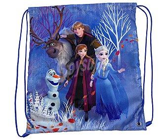 FROZEN 2 Saco con tirantes de Frozen, medidas: 36x42 centímetros, 2.