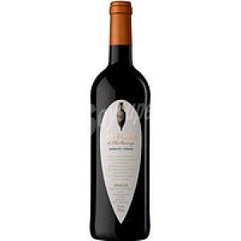 Anfora Vino d.o tarragona tinto Botella de 75 cl