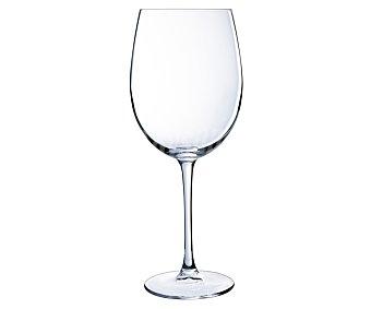 ARC Copa para vino fabricada en vidrio transparente modelo Tulipa, 0,47 litros de capacidad 47Cl 1u