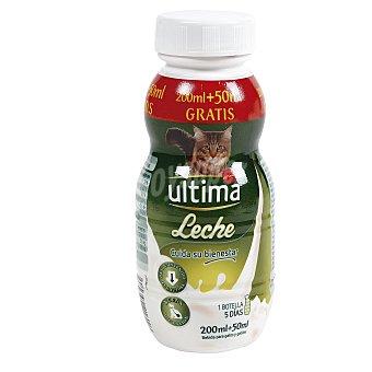 Ultima Affinity Leche para gatos fácil digestión  Botella 250 ml