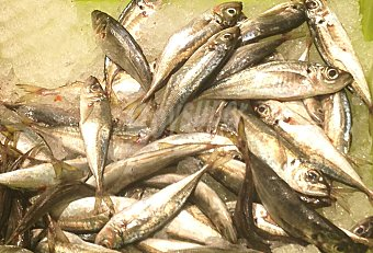 Cofradía de Pescadores de Gandia Jurel fresco entero (preparado: destripado) granel 200 g peso aprox.