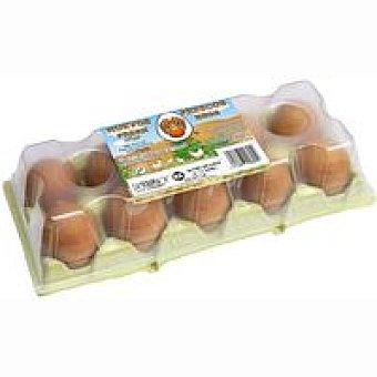 XL AMA Huevo rojo 10 unid