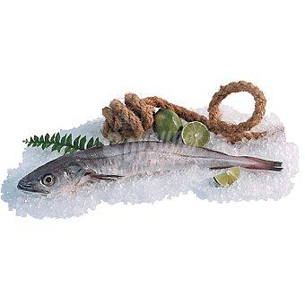 Pescadilla de ración bou peso aproximado Unidad 350 g