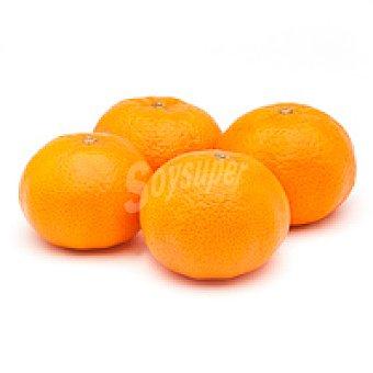 Mandarina de Andalucía 1 kg
