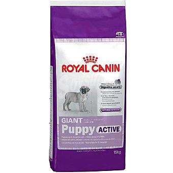 Royal Canin Alimento especial para cachorros de raza grande de 2 a 8 meses de edad Giant Puppy Active Bolsa 12 kg