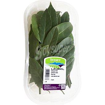 Herbex Laurel Bolsa 40 g