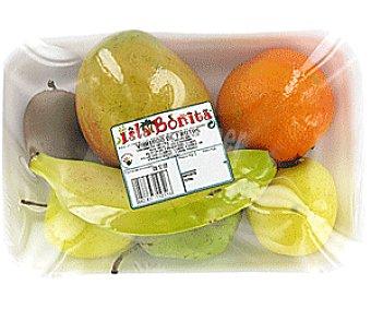 FRUTA Variado de Frutas 1300g