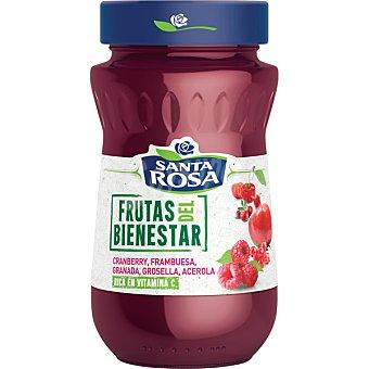 Santa rosa Frutas del Bienestar confitura de arándanos, frambuesa, granada, grosella y acerola frasco 280 g frasco 280 g