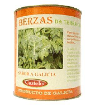 Castelo Berza lata 850 g