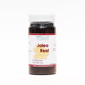 Moot Jalea real 31 c