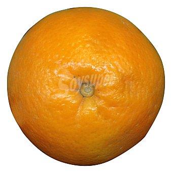 Varios Naranja (venta por unidades) Unidad 350 g peso aprox.