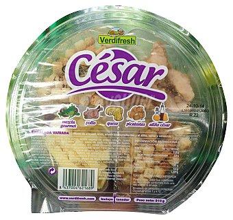 Verdifresh Ensalada cesar (escarola rizada, canonigos, radiccio, pollo, queso parmesano, salsa cesar, picatostes Y tenedor) Tarrina 210 g