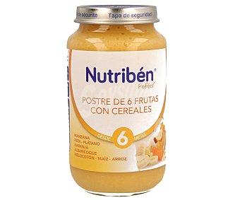 Nutribén Potito 6 frutas y cereales Tarro 250 gr
