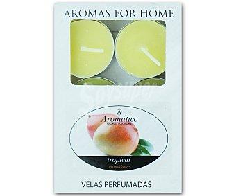 Aromático Velas calientaplatos o teelights perfumadas con olor a mango Pack de 30 Unidades