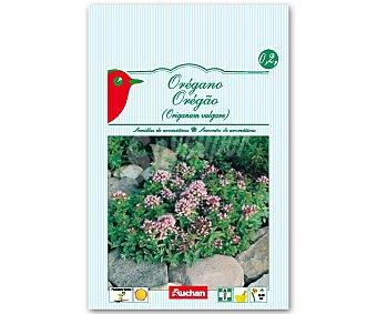 AUCHAN Semillas para plantar oregano 0,2 Gramos