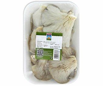Auchan Producción Controlada Seta común cultivada 400 Gramos