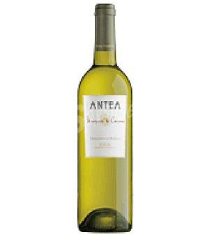 Marqués de Cáceres Vino blanco Antea D.O. Rioja 75 cl
