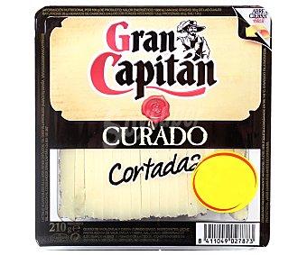 Gran Capitán Queso curado cuña 340 g