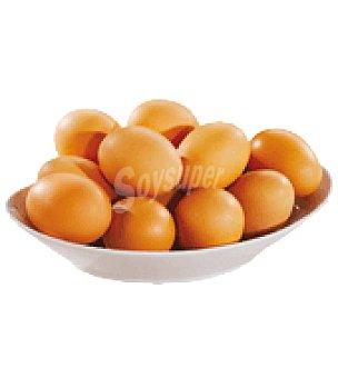 El Granjero Huevos L 12 ud