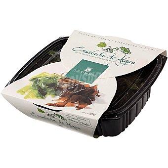 Porto Muiños Ensalada de algas frescas conservadas en sal Tarrina 200 g