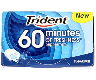 Trident Chicle 40 minutos menta 20 g