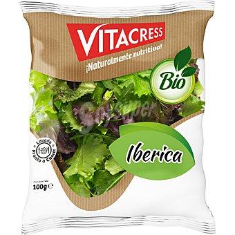 Vitacress Ensalada ecologica iberica mezcla lechuga roja verde rizada y rucula bolsa 100 g