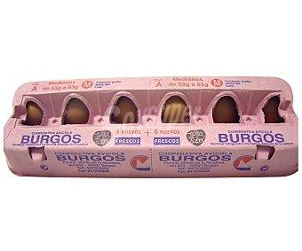 SOC. BURGOS Huevos clase M 12 Unidades